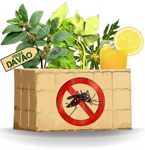 dengue best hospital