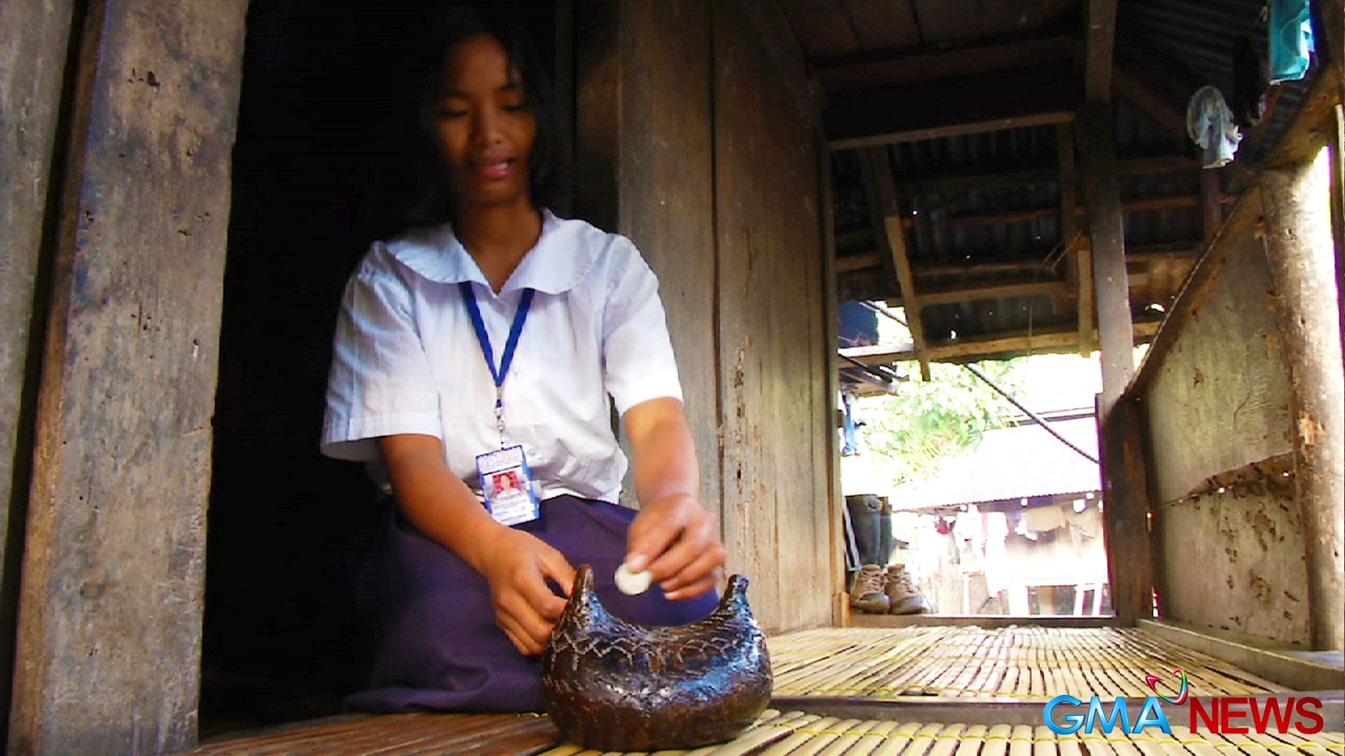 Problema at Solusyon: Ang Pinansyal na Problema ng mga Kolehiyala