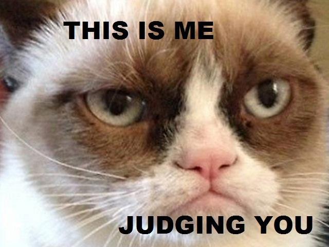 Famous Grumpy Cat Is Famous Gma News Online