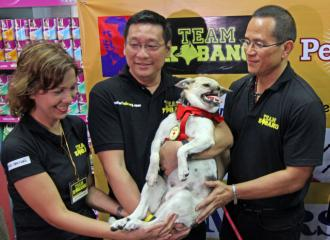 Hero dog Kabang goes to Makati after arriving from US