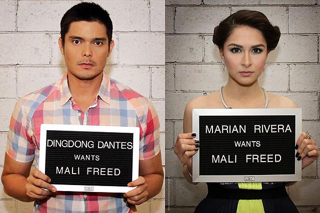 Marian Rivera, Dingdong Dantes join call for Mali the ...