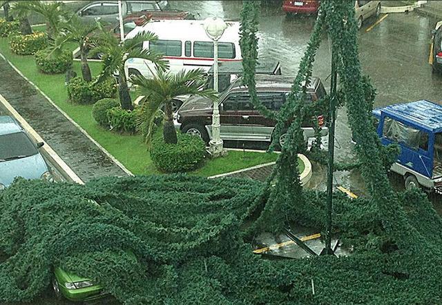 640_2013_11_08_16_28_14 - Typhoon Yolanda lashing: Images - Philippine Business News