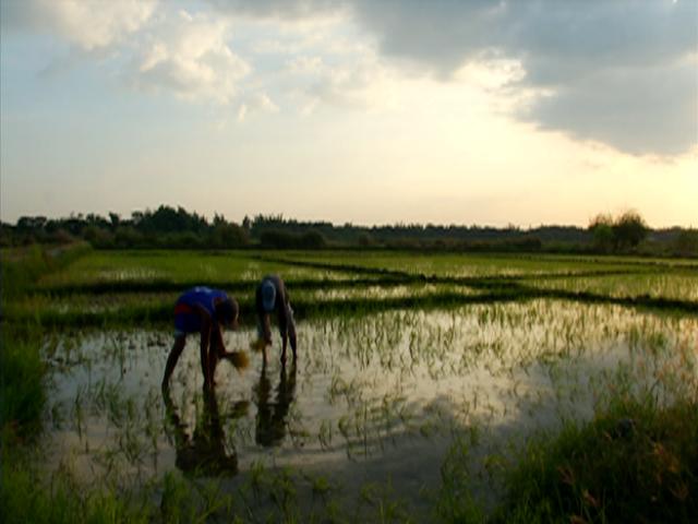 Notebook,' natuklasan ang sistema ng korapsiyon sa agrikultura