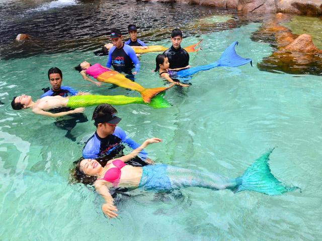 Get Ready To Swim As Mermaids Do At Manila Ocean Park Community Bulletin Board Gma News Online