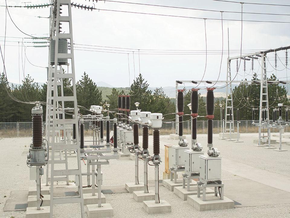 ERC orders power utilities to refund unused regulatory cost