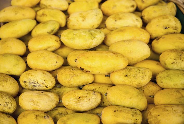 PHL seeks to expand agri exports to Japan, South Korea