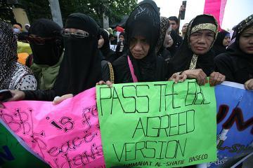 Muslims urge senators for immediate passage of BBL