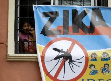 Singapore reports first Zika case | Lifestyle | GMA News Online