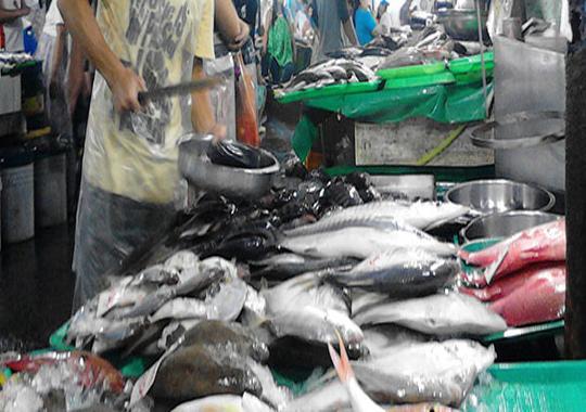 uri ng isda Tagalog ng mga isda at laman dagat wahehehe may alam ba kayo na fish ulit-ulit ang pangalan example: sap-sap.