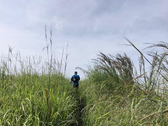12 career lessons trekking Mt  Binutasan in Rizal taught me
