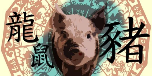 62a759bc4 How lucky are you going to be in 2019, the year of the Earth Pig ...