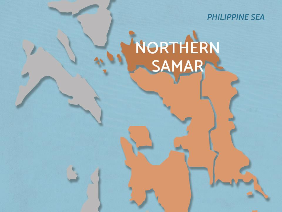 2 cops killed in Northern Samar encounter with illegal loggers