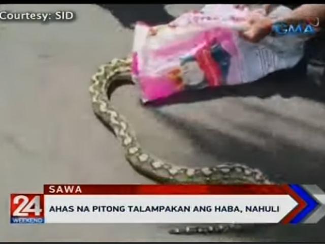 Python, Rosario, Cavite