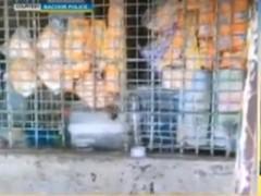 Sari-sari store na front ng droga