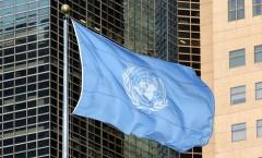 United Nations flag UN flag UN thumbnail UN logo United Nations logo United Nations thumbnail