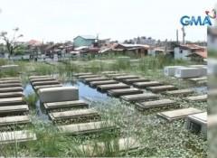 Masantol, Pampanga cemetery
